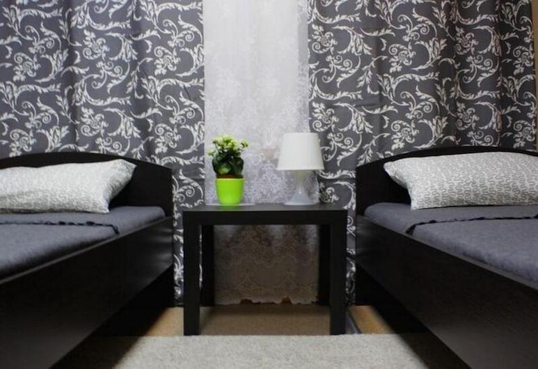 特米諾青年旅舍, 聖彼得堡, 標準雙床房, 客房