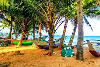 Nuotrauka: White Ro Resort, Tangalė