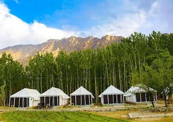 Picture of Ladakh Tarrain Camp in Leh
