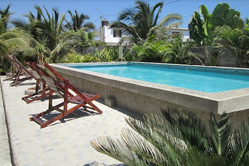Guacamayo