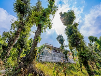 Fotografia do OYO 14134 Home Devdar Cottage Kempty Road em Mussoorie