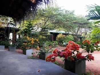 丹布拉陽光渡假村及水療中心的相片