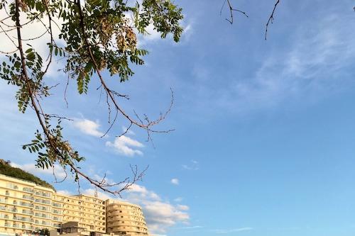澤塔飯店/