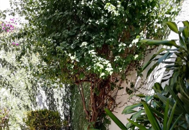 Casa Blue, Zapopan, Terrace/Patio