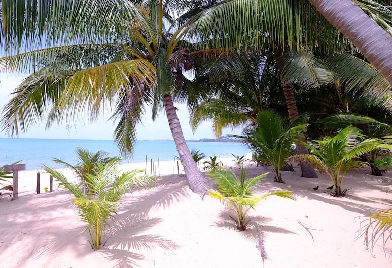 蘿莉平房酒店, 蘇梅島, 海灘