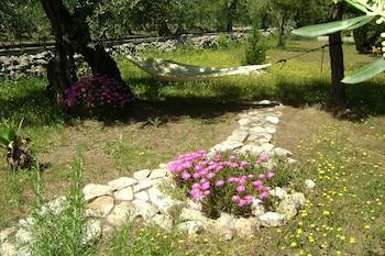 在特拉尼的地中海别墅民宿照片