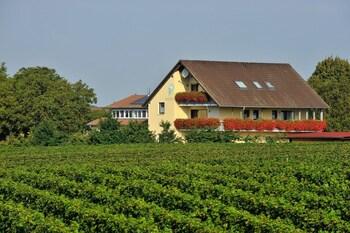 Freiburg im Breisgau bölgesindeki FERIENHOF WALTER resmi