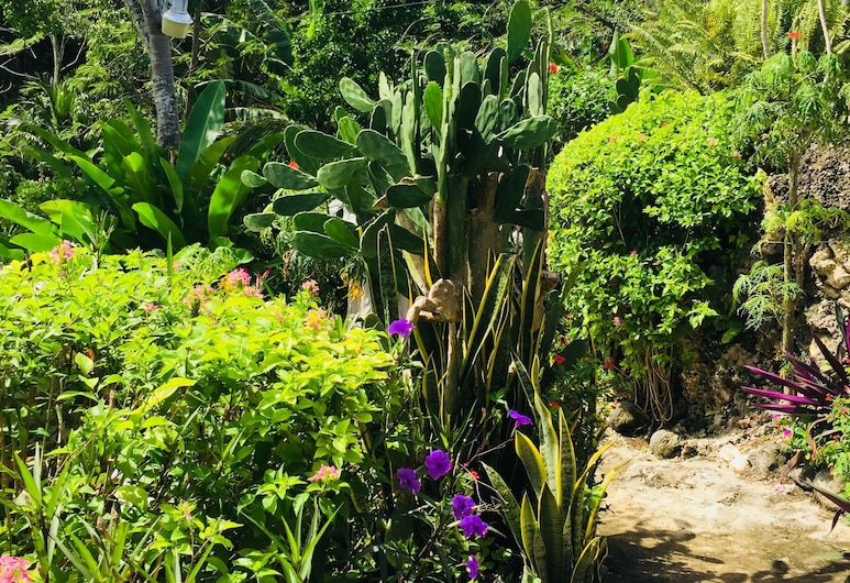 The Judy House Cottages and Rooms, Negril, Garten