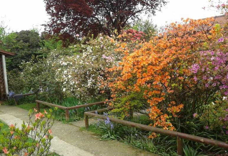 Cabañas El Jardin, Valdivia, Zahrada
