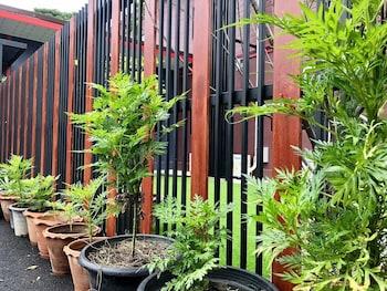 Kanchanaburi bölgesindeki Thyme Xeriscape Hostel resmi