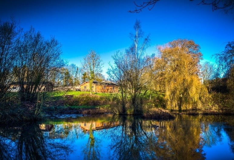 New Forest Lodges, Fordingbridge, View from property