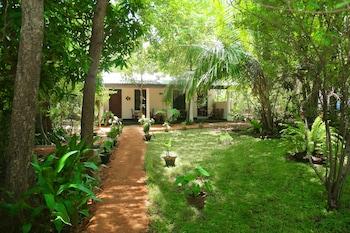 丹布拉斯吉利芒果花園渡假村的相片