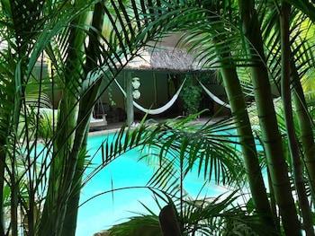 Image de VILLAS ADRIANA PALENQUE à Palenque