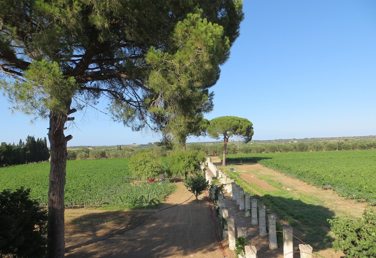 Agriturismo Occhineri, Campi Salentina, Jardín