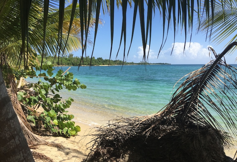 The Vieques Guesthouse, Vieques, Beach