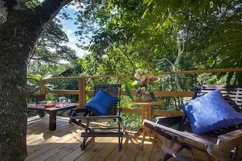 聖伊格納休甜美歌曲叢林小屋酒店 - 穆奧諾度假村的圖片