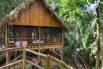 Picture of Sweet Songs Jungle Lodge, a Muy'Ono Resort in San Ignacio