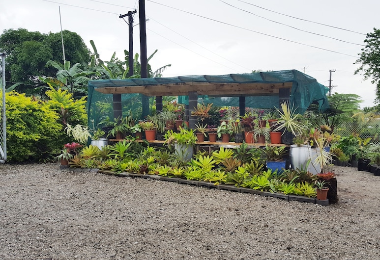 Uili's Farm House, Apia, Jardín