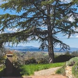 Agriturismo La Collina Toscana