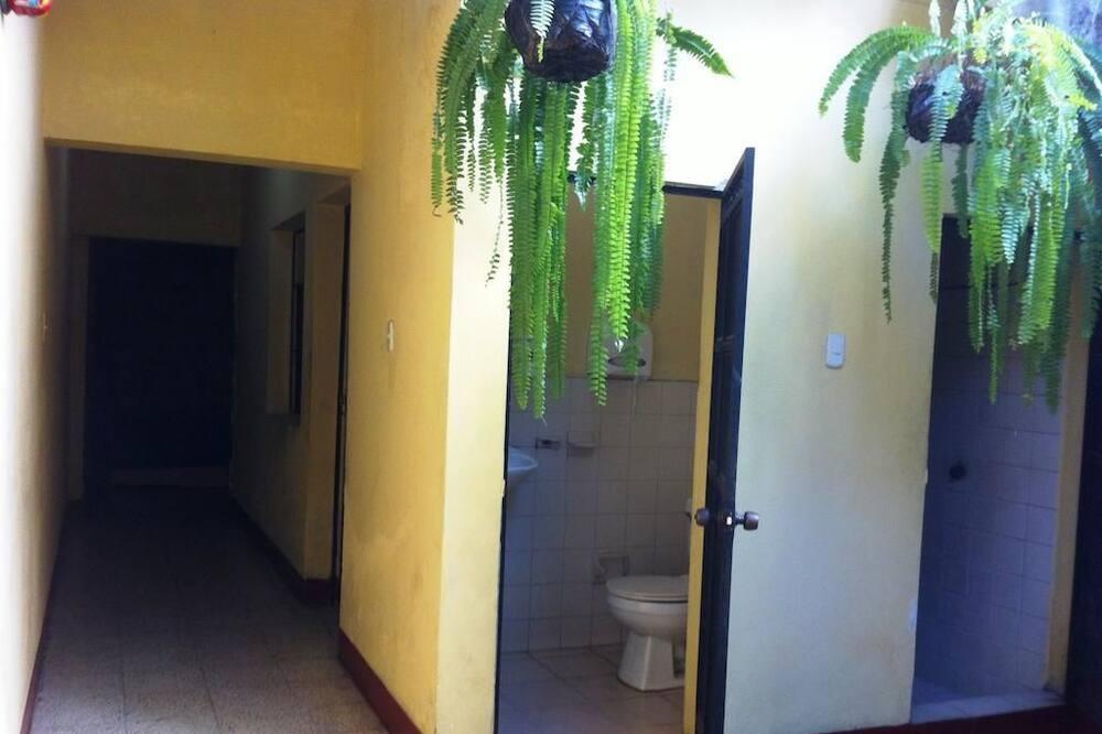 Keturvietis kambarys su pagrindiniais patogumais, Kelios lovos, Nerūkantiesiems - Vonios kambarys