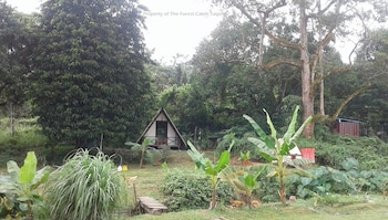 Slika: The Forest Cabin Taiping ‒ Taiping