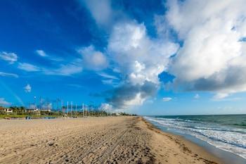 Picture of Aloft Delray Beach in Delray Beach
