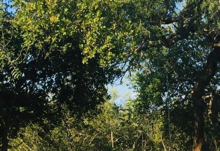 Call of the Wild Lodge, Hoedspruit, Piscina
