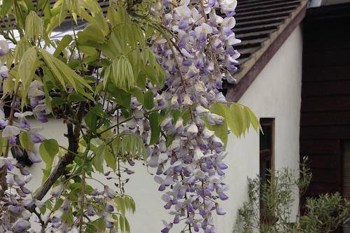 紫杉農場酒店/