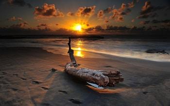 Nuotrauka: Seagulls Beach & Garden Cabanas., Tangalė