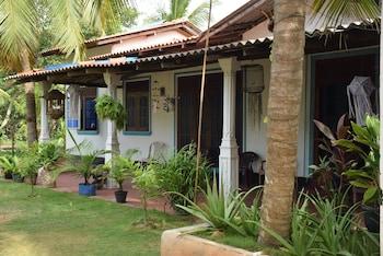 Foto di Little Guest ad Anuradhapura
