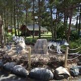 מבט על הנכס מבחוץ