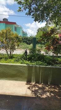Φωτογραφία του Casa Nelffis, Βινάλες