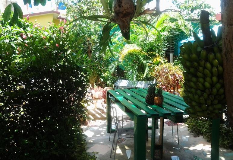El Jardín de Daynelis, Vinales, שטחי הנכס