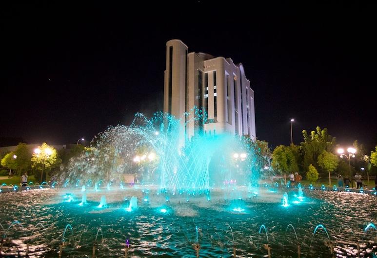 Citizen hotel, Tashkent, Kút
