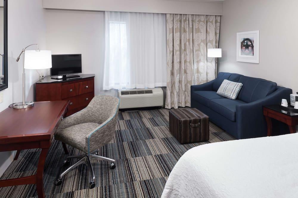 一張特大床非吸煙區無障礙客房 - 客房