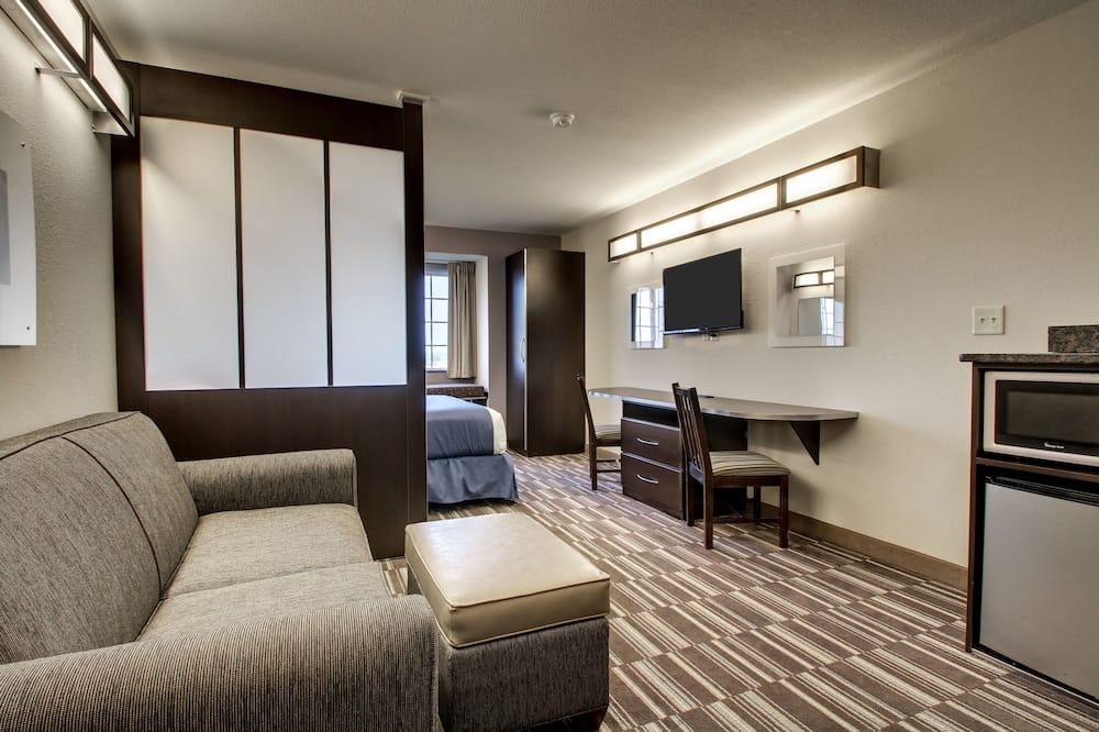 Studio Suite, 1 Tempat Tidur Queen, non-smoking - Area Keluarga