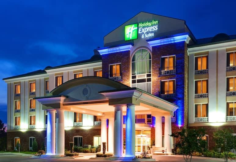 Holiday Inn Express & Suites Millington, Millington, Exterior