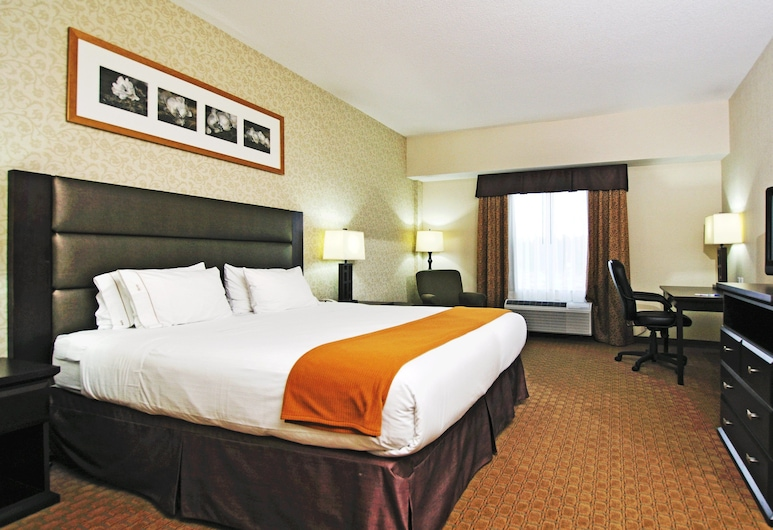 Holiday Inn Express Hotel & Suites Ottawa Airport, Ottawa, Guest Room