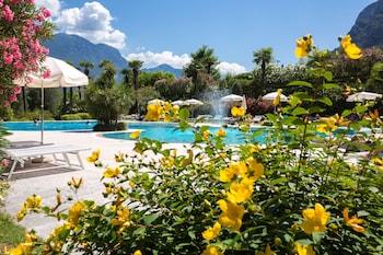 リーヴァ デル ガルダ、アストリア パーク ホテル SPA リゾートの写真