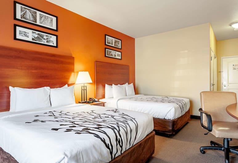 Sleep Inn & Suites Tyler South, Tyler, Standard Oda, 2 Büyük (Queen) Boy Yatak, Sigara İçilmez, Oda