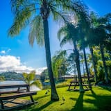 Bay of Palms