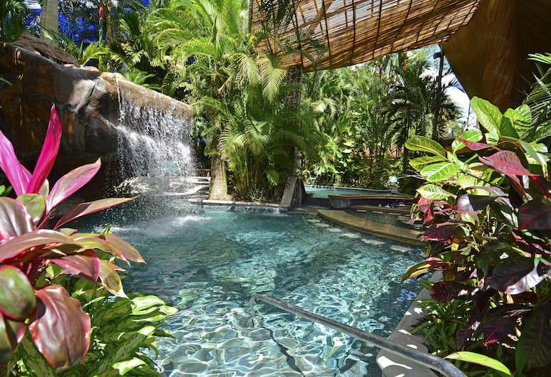 巴爾迪溫泉酒店, La Fortuna, 天然泳池