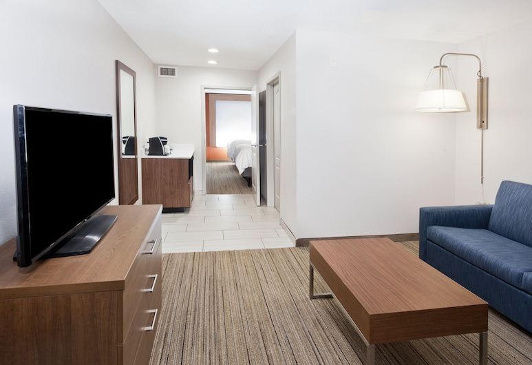 Holiday Inn Express & Suites Rome-East, an IHG Hotel, Rome, Deluxe Suite, 1 King Bed, Accessible, Non Smoking, Guest Room