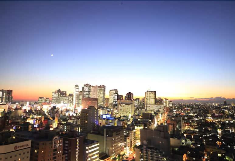 東新宿燦路都大飯店, 東京, 飯店景觀