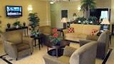 الفنادق الموجودة في فولتونديل، الإقامة في فولتونديل،الحجز بفنادق في فولتونديل عبر الإنترنت