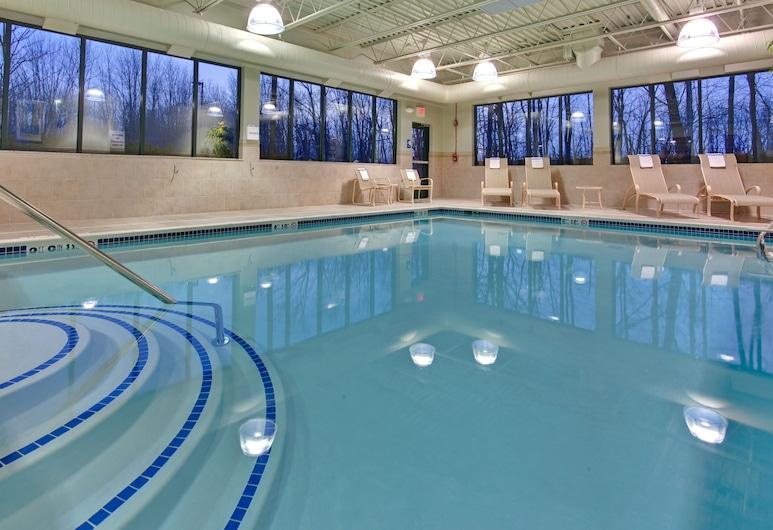 Holiday Inn Express Hotel & Suites Detroit-Novi, Novi, Piscina