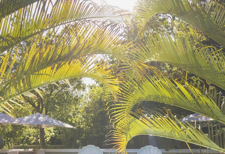 Schoone Oordt Country House, Swellendam, Udendørs pool