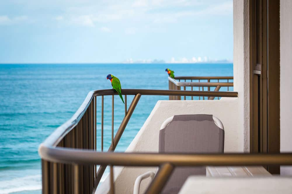 Vistas desde el alojamiento