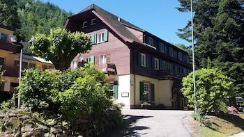 Picture of Waldhotel Forellenhof in Baden-Baden