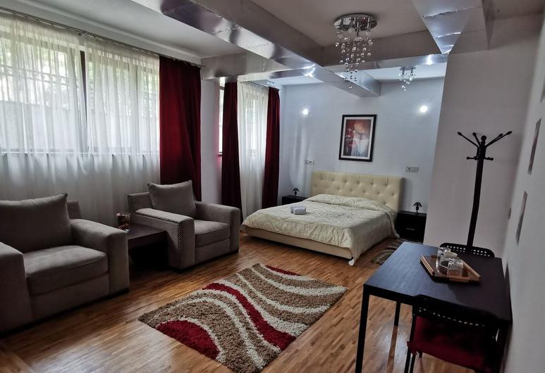 PRince Residence Apartments, Bukurešt, Studio apartman, kuhinja, pogled na vrt, Soba za goste